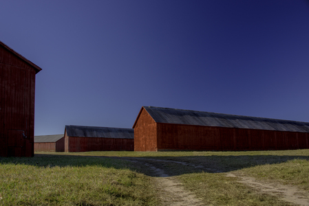 Barns_081