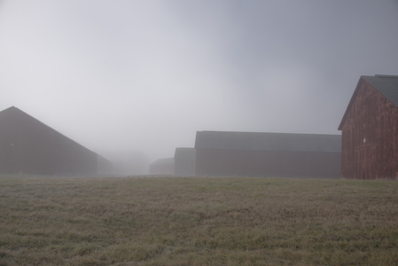 Barns_087