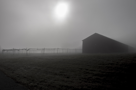 Barns_088